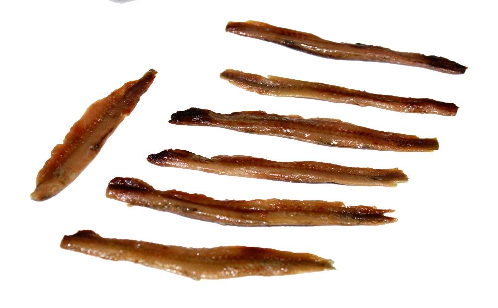 anchoas del cantabrico